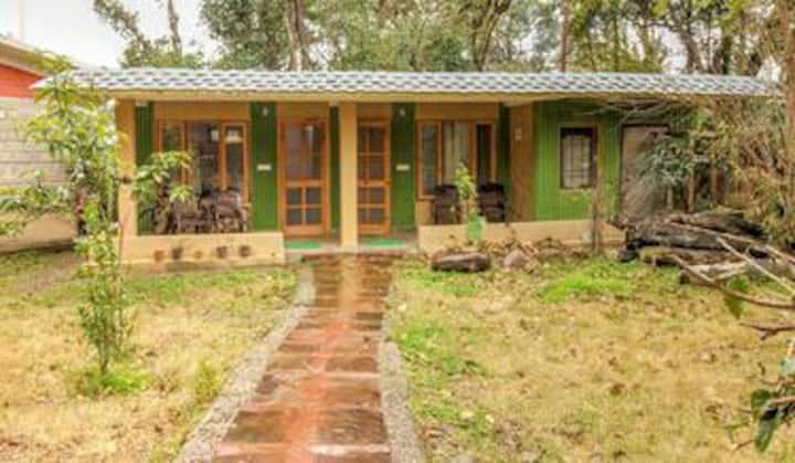 Meditative Meadows Cottage