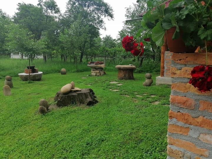 Goga's House