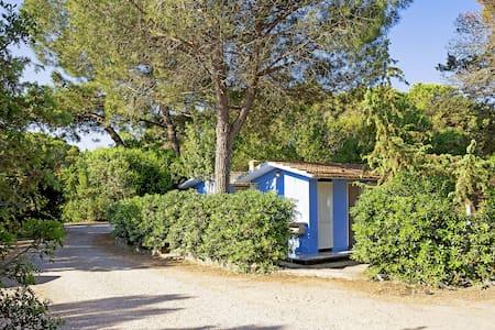 3-room house 33 m² in Marina di Castagneto