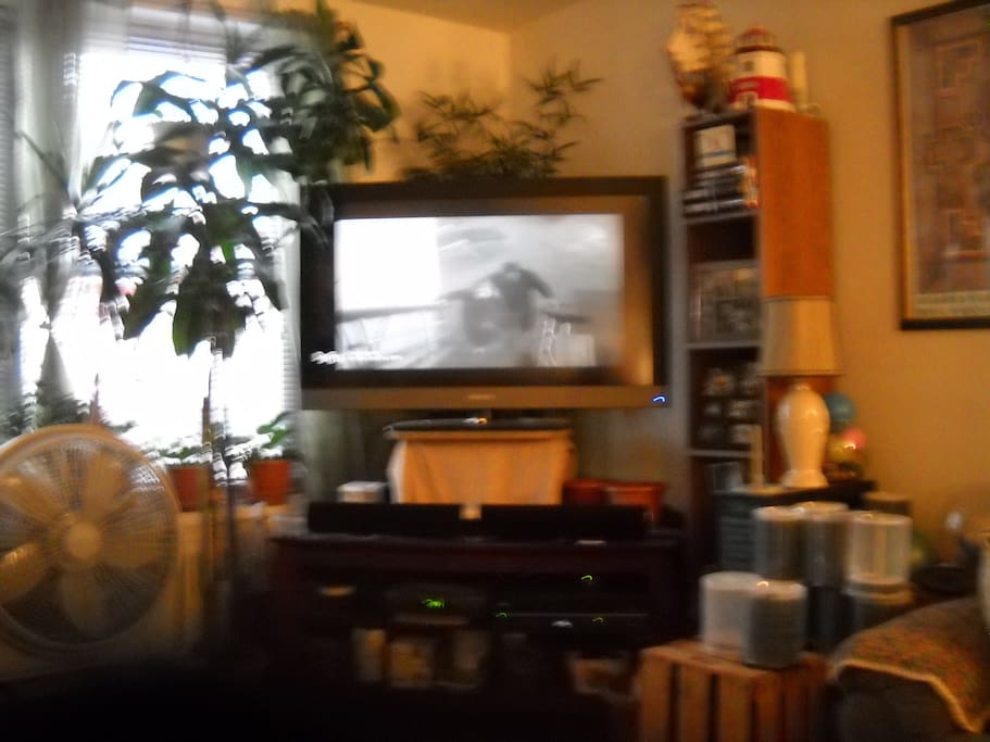 this is livingroom of the apt with 46'' flat screen tv