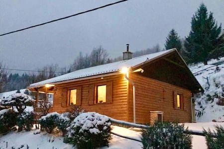Mountain forrest cabin