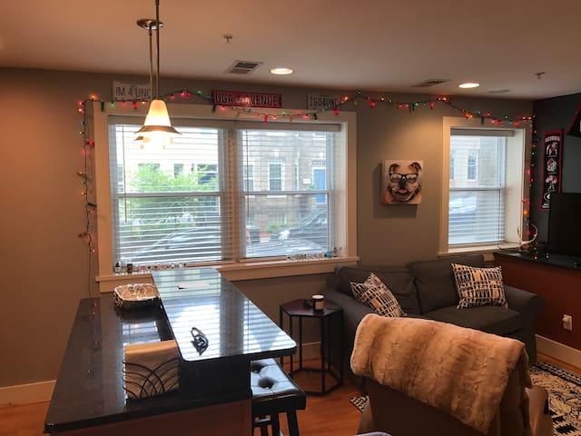 JP's 1 bedroom DC Condo in Columbia Heights/U St