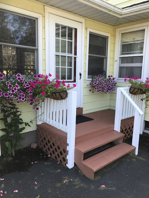 Cottage Window Boxes