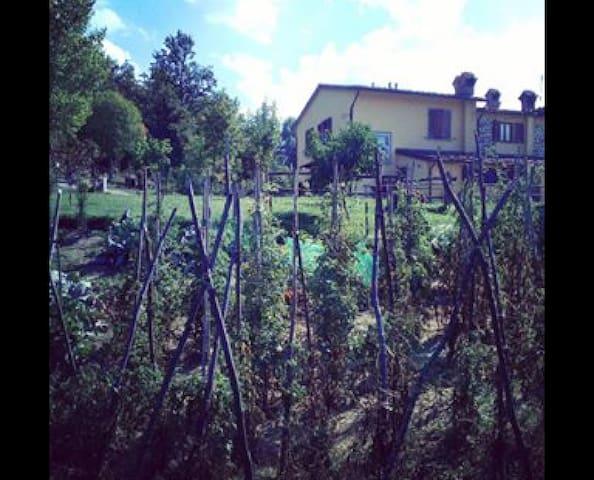Deliziosa casa in campagna