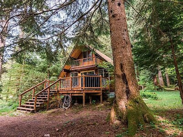 Rainier Cabin-Hot Tub/Sauna & Wood Stove