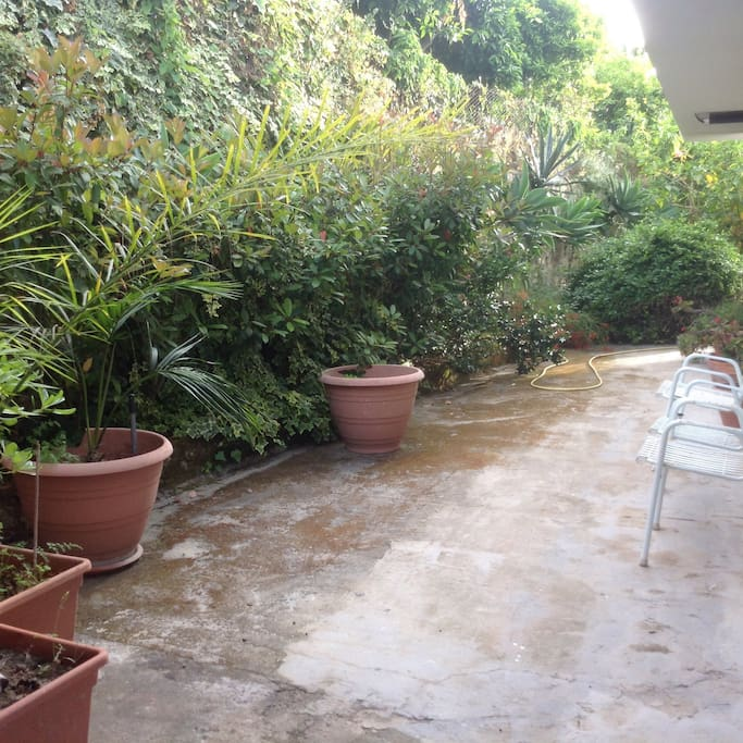 Uno scorcio del giardino.