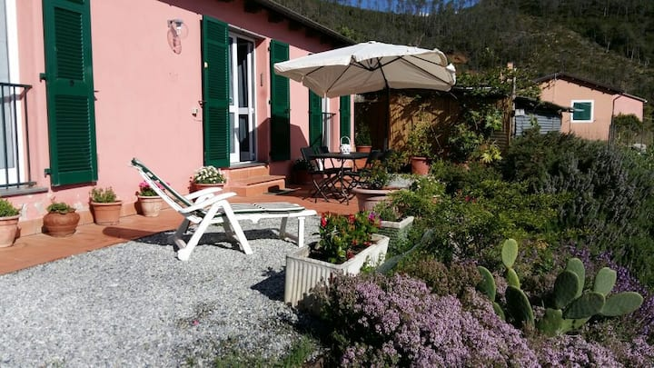 Casa Cinzia  Bonassola.Cod citra 011005 LT 0011