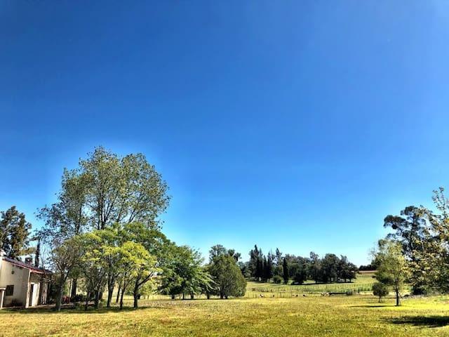 Escapada rural en Baradero!