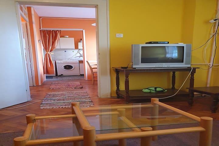 EXIT 2020 Novi Sad apartment