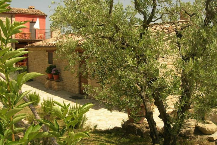 Apartment with stunning views of the Sibillini mountains , surrounded by nature , with wifi and pool