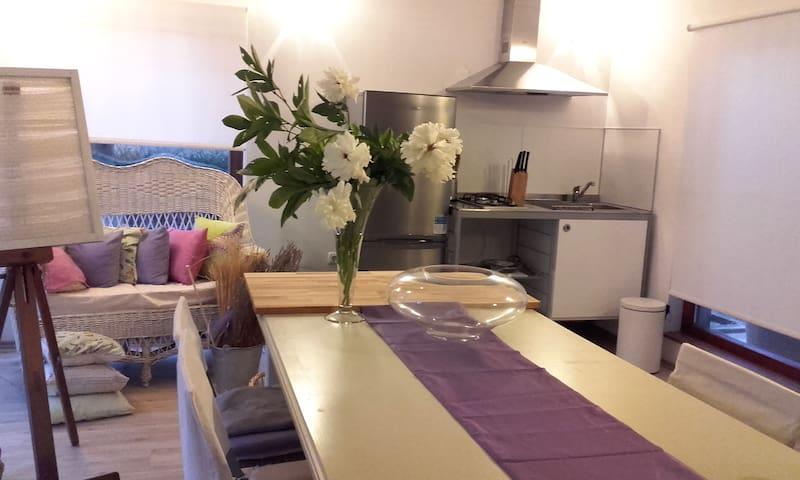 Studio Apartman - Galižana - Leilighet
