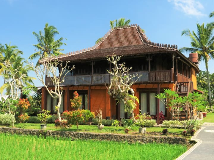 Joy Villa 2 - nestled in the rice fields