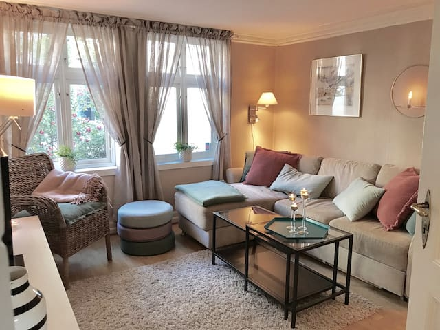 Livingroom with sofabed that sleeps 2 adults or 3 kids