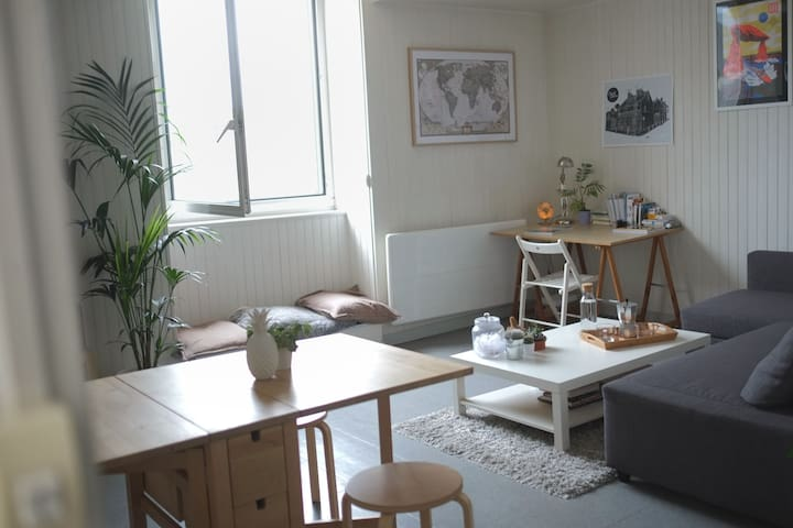 Beautiful cosy apartment in the main street - Pont-l'Abbé - Apartment