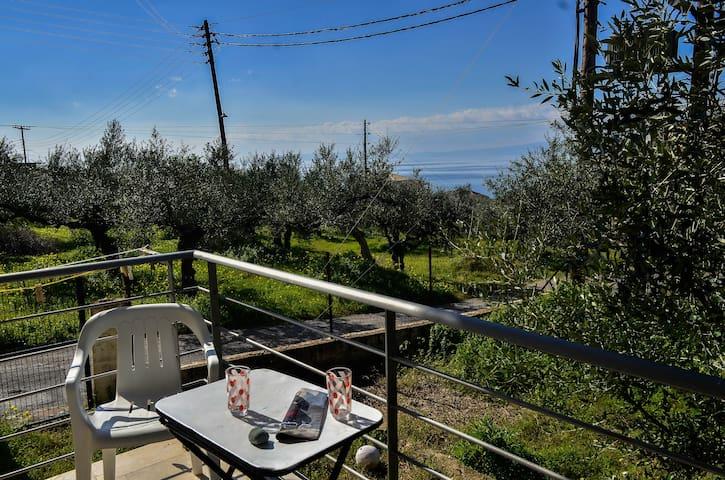 Sea view lovely house - Kalamata - Casa