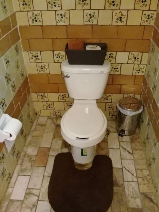 Sanitario del medio baño
