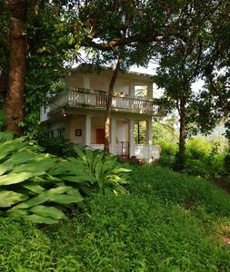 Nature House - Arambol