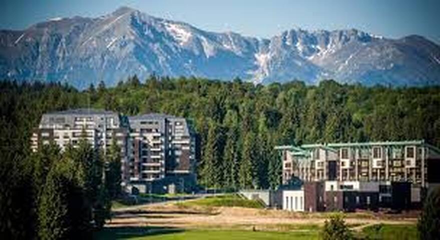 Silver Mountain Luxury Apartment C42