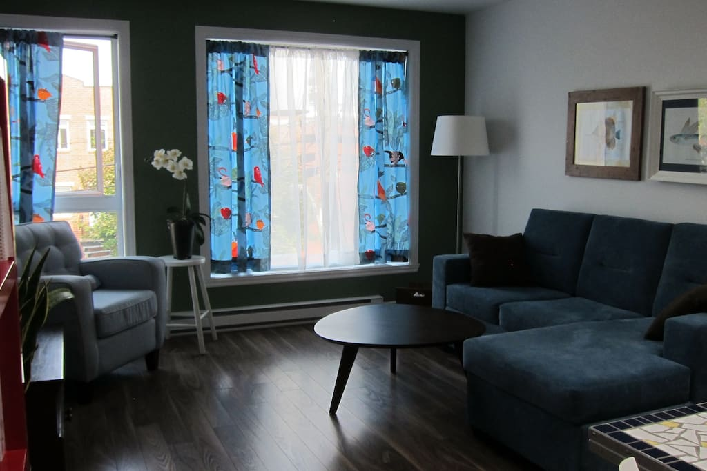 Bright 1 Bedroom Apartment Homa Apartments For Rent In Montreal Quebec Canada