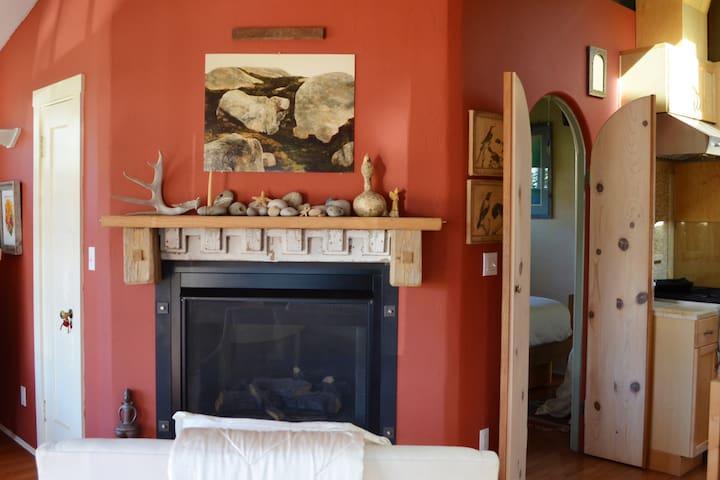 Double sided Fireplace-- livingroom side