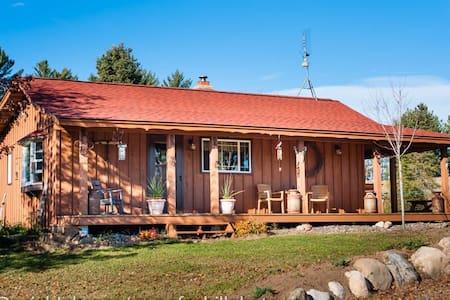 Pioneer Creek Cabin - Cabane