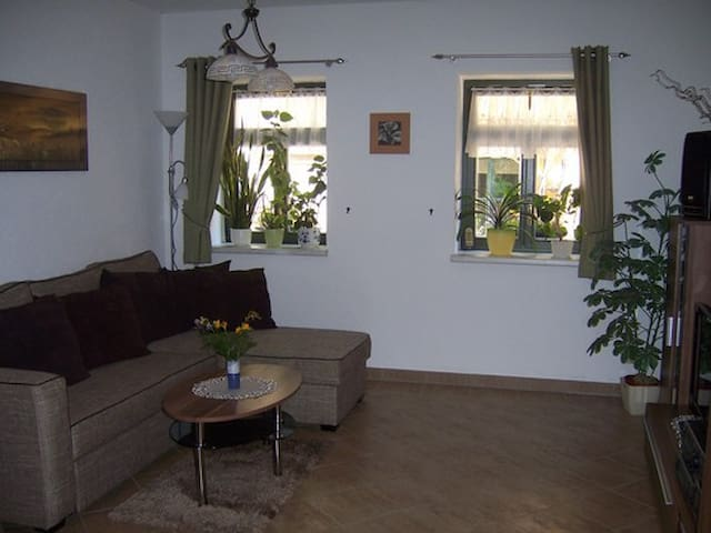 Cozy apartment with a garden - Pirna - Huis