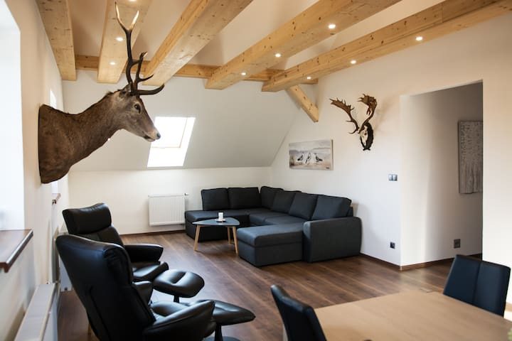 Prostorný a stylově zařízený apartmán pro 4-5 osob