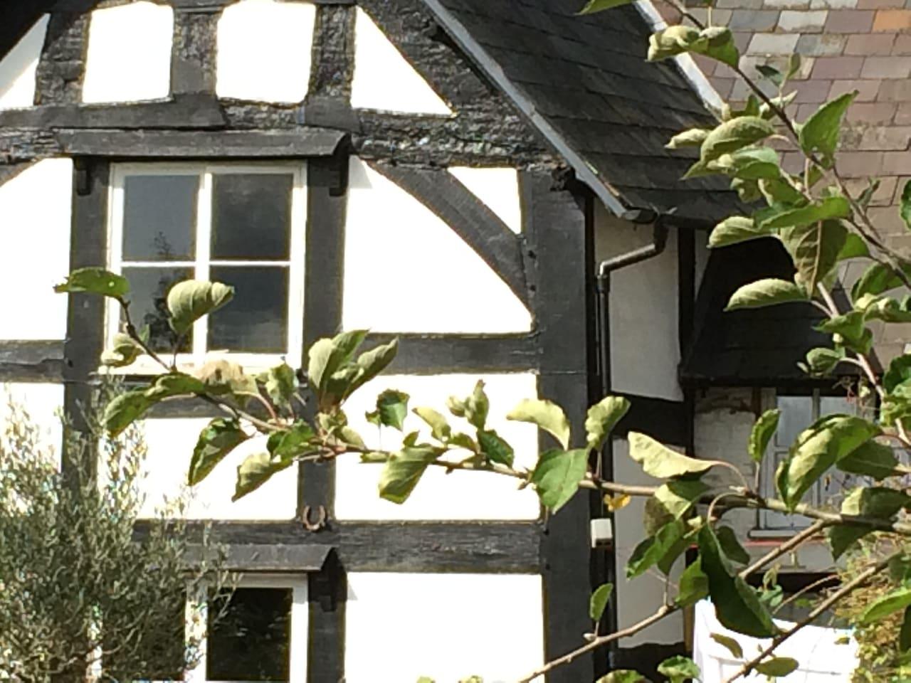 Black & White farmhouse beside the river Wye