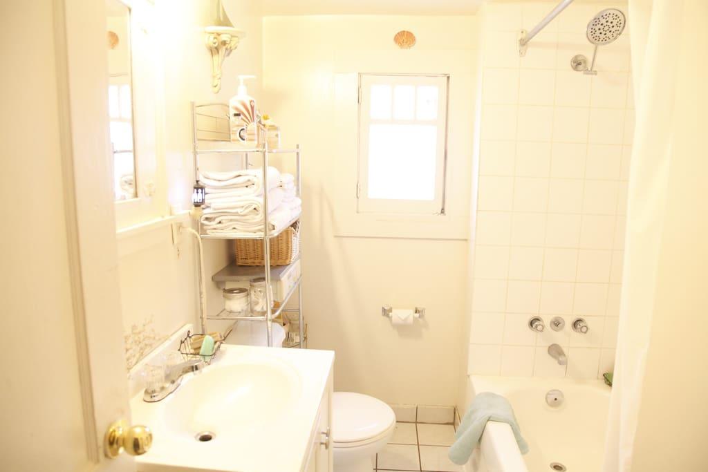 Shared bathroom for the house.