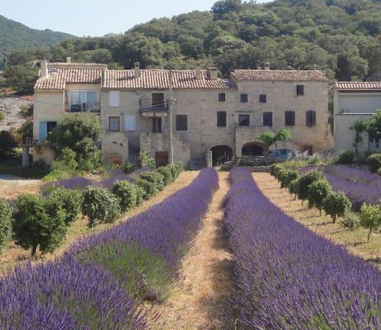 Maison de charme en Drôme provençale - Montbrison-sur-Lez