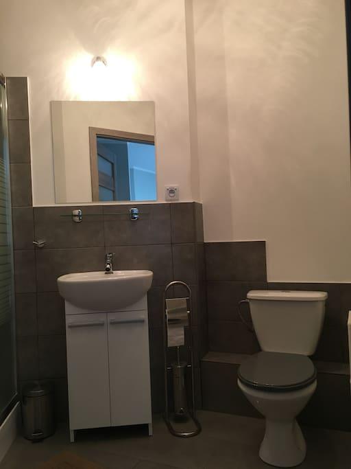 Łazienka z umywalką i toaletą.  Bathroom with washbasin and toilet.