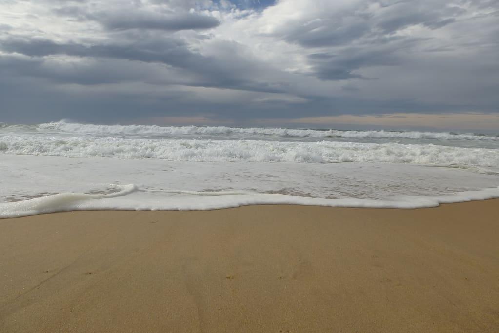Sublimes plages à perte de vue... au sud vers Hossegor et Capbreton, au nord vers Souston et Vieux Boucau.
