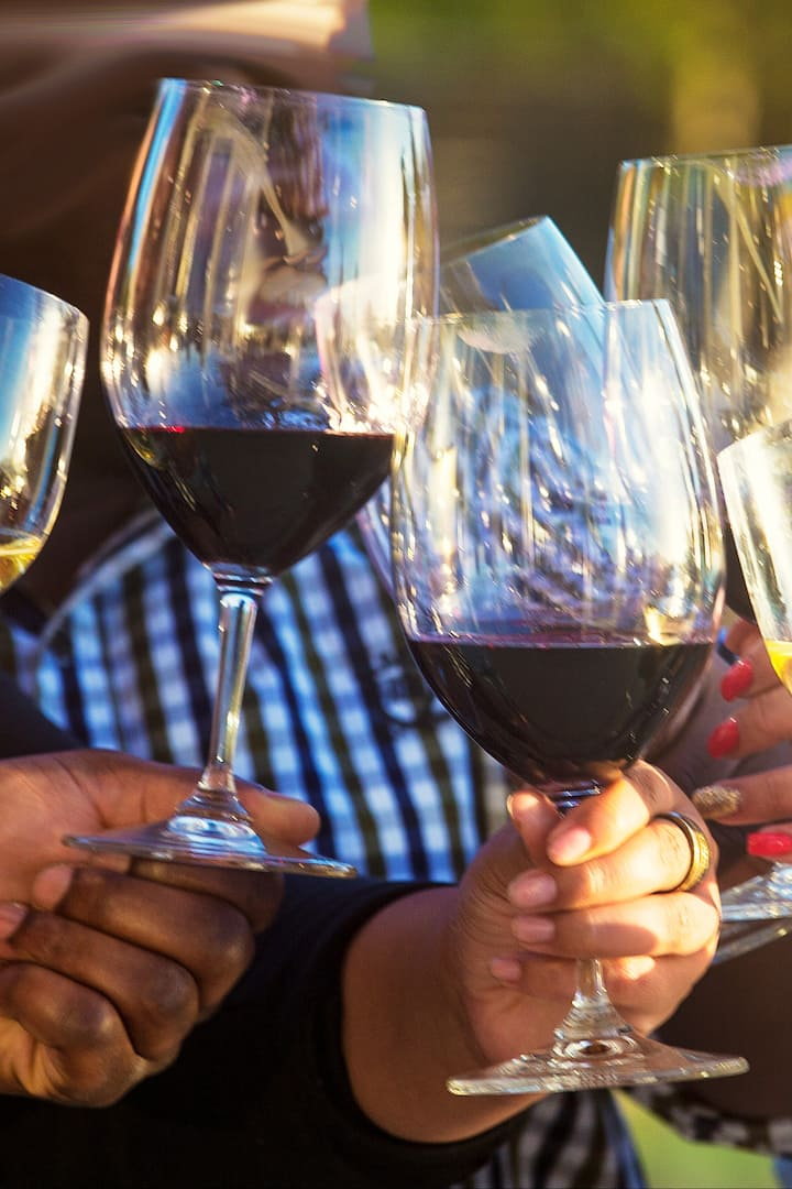 Learning about wine & wine tasting