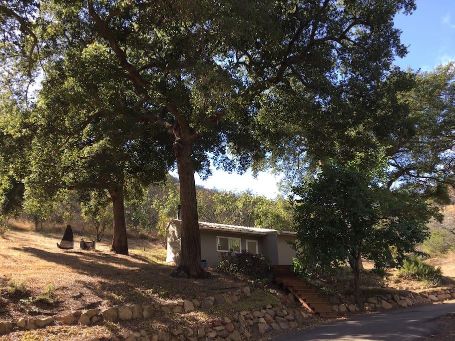 Main house on Avocado Ranch
