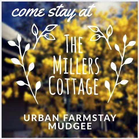 Urban Farmstay in town, quiet, peaceful, in Mudgee - Mudgee - House