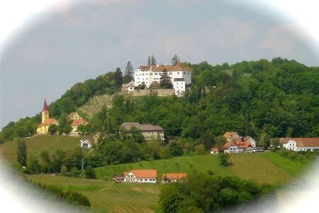 Gästesuite Schlossblick - Gemeinde Kapfenstein - Apartment - 2