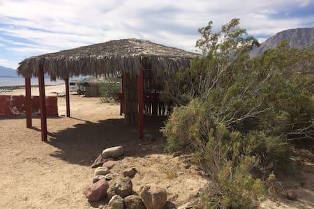 Campo Archelon: Palapa Delfín