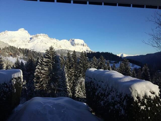 Studio ski aux pieds Combloux