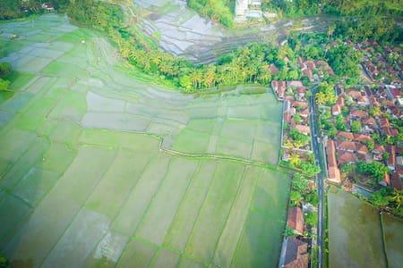 Traditional Village Rice Field 2BR - Ubud - Bed & Breakfast