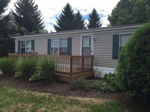 Abrams Road Cottage - Watkins Glen