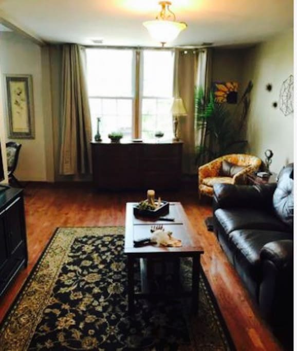 Bucktown Warm Cozy Private Room Apartments For Rent In Chicago Illinois United States