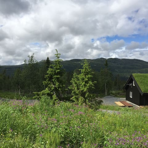 Hytte på fjellet i flot turområde - mountain cabin - Nord Torpa - Kabin