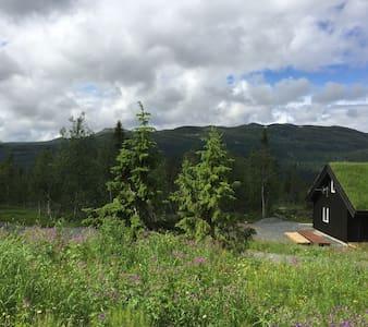 Hytte på fjellet i flot turområde - mountain cabin - Nord Torpa