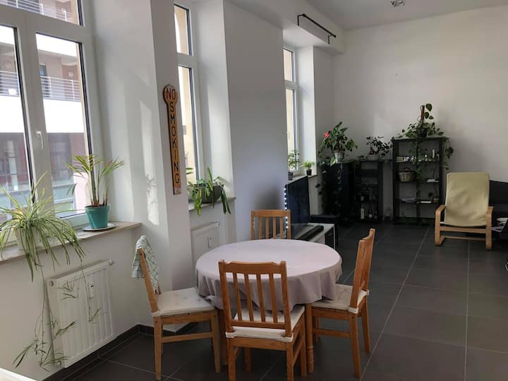 Appartement Moderne - 1 Chambre