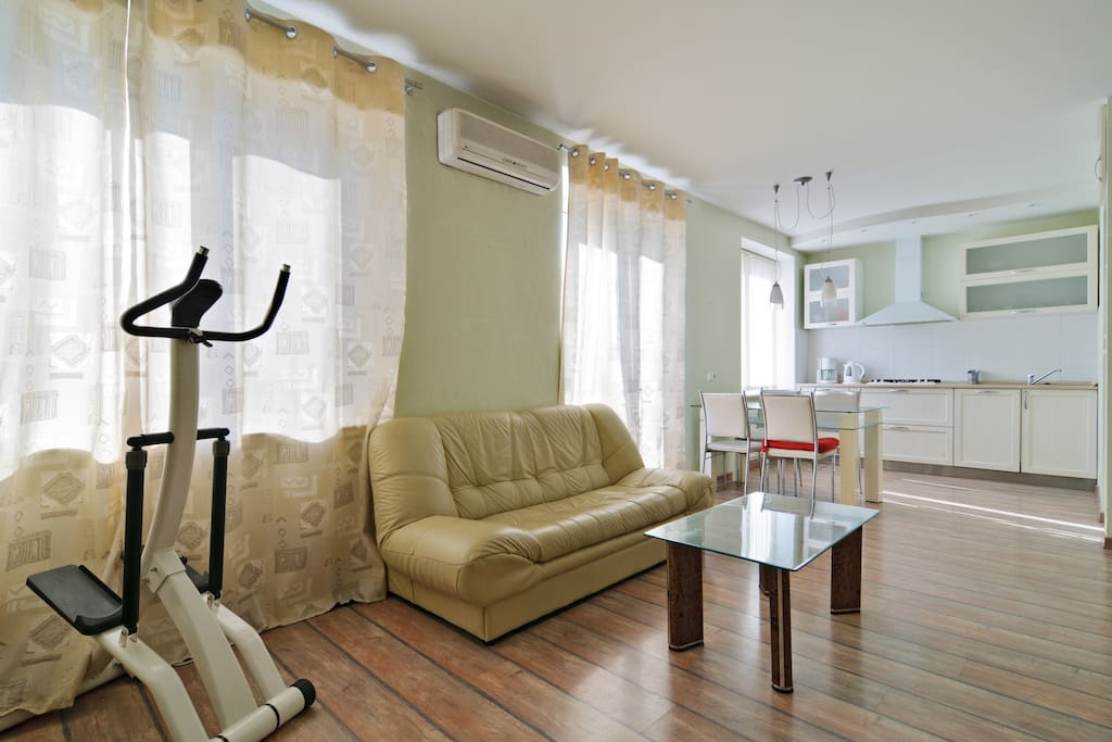 Studio Apartment With One Bedroom Flats For Rent In St Petersburg Russia