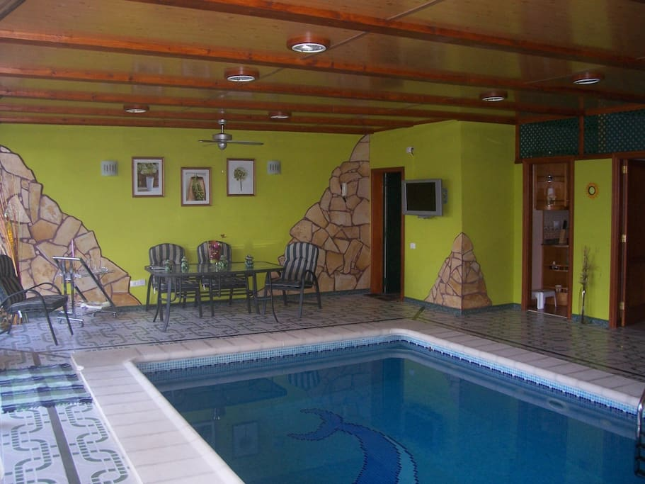 Suitable dolphin blue heated indoor pool apartments for - Indoor swimming pool temperature regulations ...