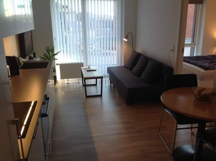 Brand new cozy apartment near forest, city & ocean