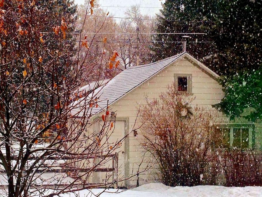 Winter in Bozeman. An easy 10 minute walk to downtown.