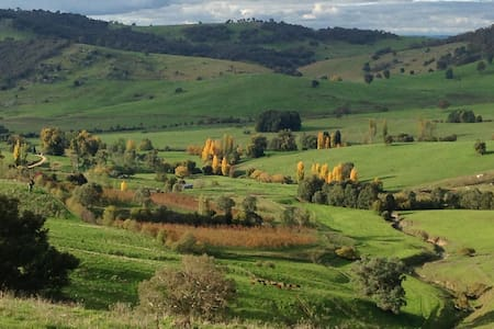 Moorallie Cottage Farm Stay - Adelong