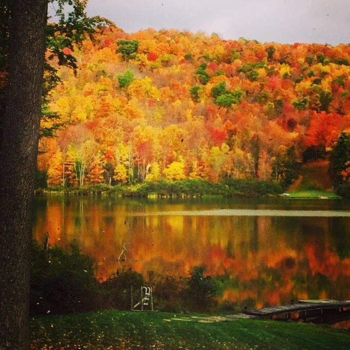 Fall foliage - 10/3/2014
